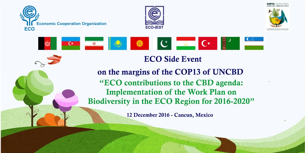 ECO Side Event on the Margins of the COP 13 of UNCBD